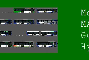 AUVASA-Busse (Valladolid, Spanien)